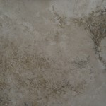 Rustic Forest Travertine Tile